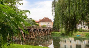 Kostanjevica-shutterstock_1486508801