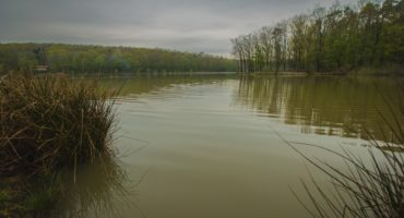 Bukovniško-jezero-shutterstock_1367874635