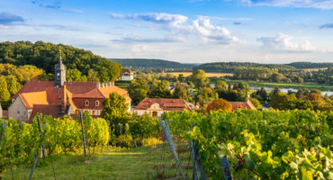 Meissen-vinogradi-shutterstock_1271000503